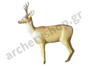 Eleven Target 3D Deer with Horns